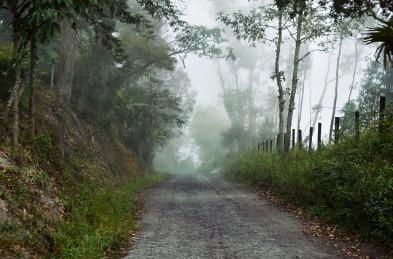 foggy-1082224_640